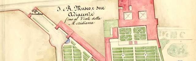 Archive of the Royal Museum of physics and natural history of Florence