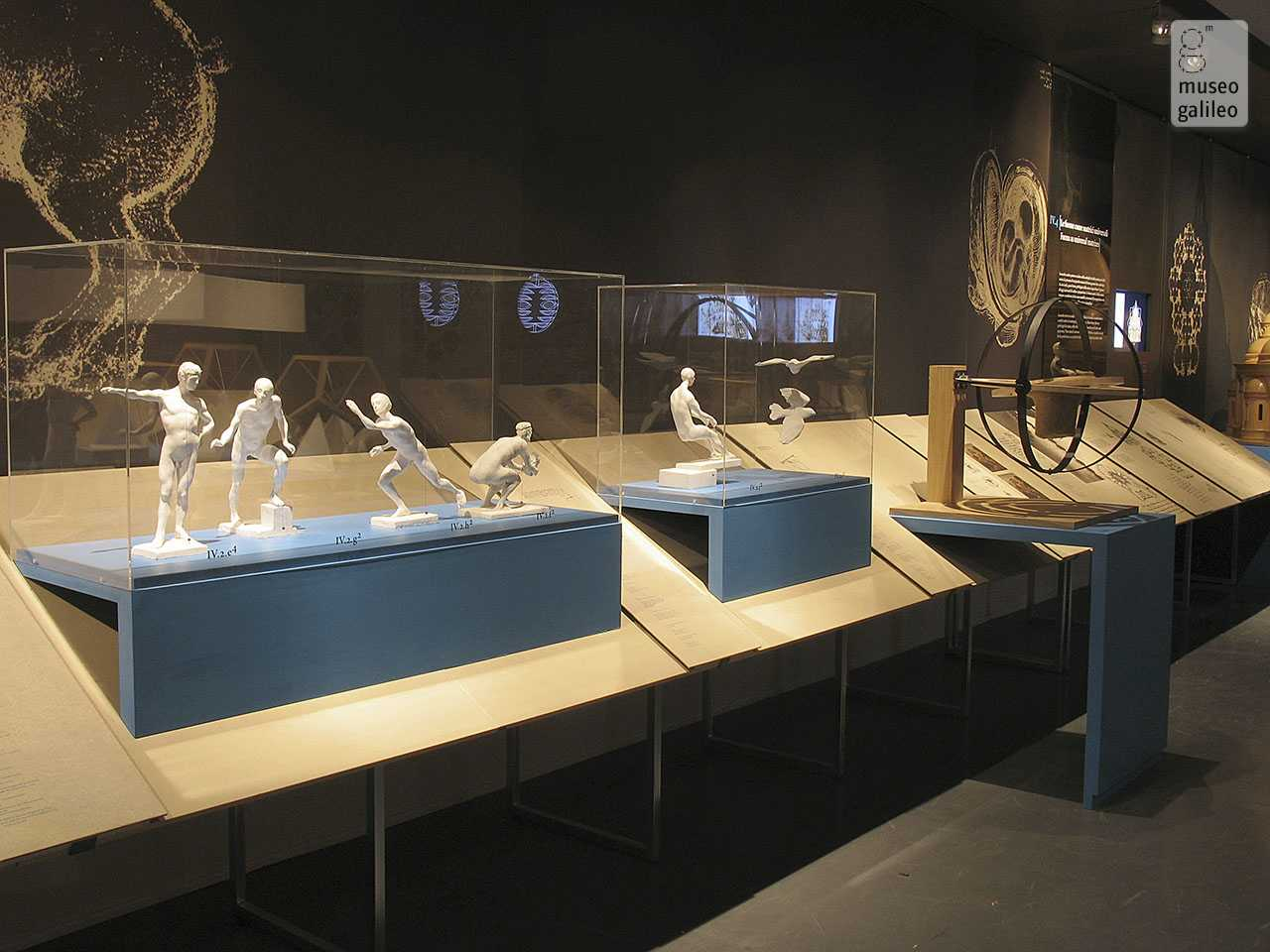 "The Mind of Leonardo: The Universal Genius at Work. Exhibition hall of section IV, ""The grammar of forms: proportion and analogy"", Florence, Galleria degli Uffizi"